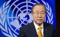 UN Secretary-General speaks at the Security Council on the investigative team's Final Report