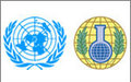 Statement from the OPCW-UN Joint Mission